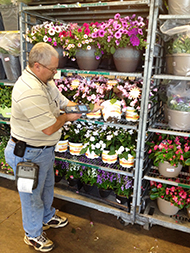 Distribution Manager Clay Penny scans a flower pot from a cart full of flowers using an Intermec hand-held scanner and printer for Scan by Cart at Young's Plant Farm in Auburn, Ala.
